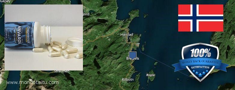 Best Place to Buy Anavar Steroids Alternative online Harstad, Norway