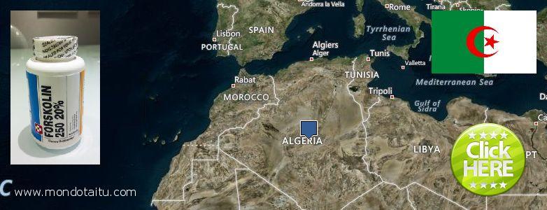 Best Place to Buy Forskolin Diet Pills online Algeria