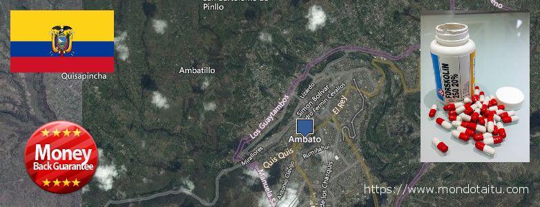 Where to Buy Forskolin Diet Pills online Ambato, Ecuador