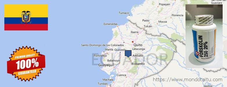 Where to Buy Forskolin Diet Pills online Ecuador