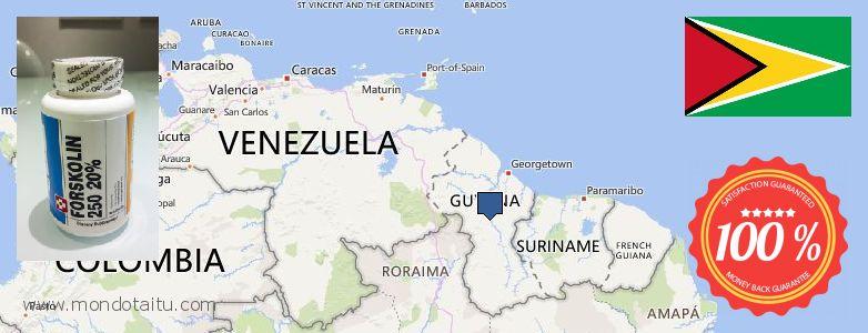 Where to Purchase Forskolin Diet Pills online Guyana