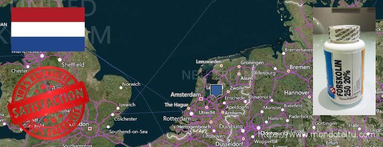 Where to Buy Forskolin Diet Pills online Netherlands