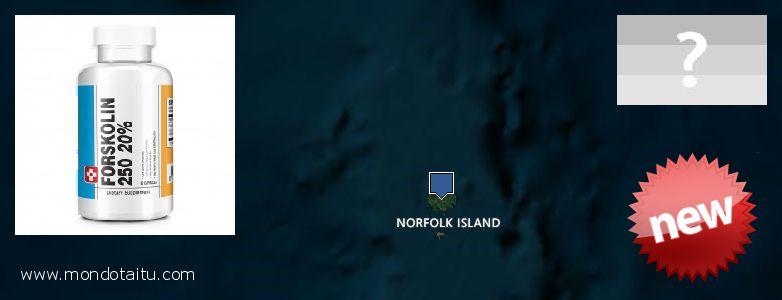Where Can I Purchase Forskolin Diet Pills online Norfolk Island
