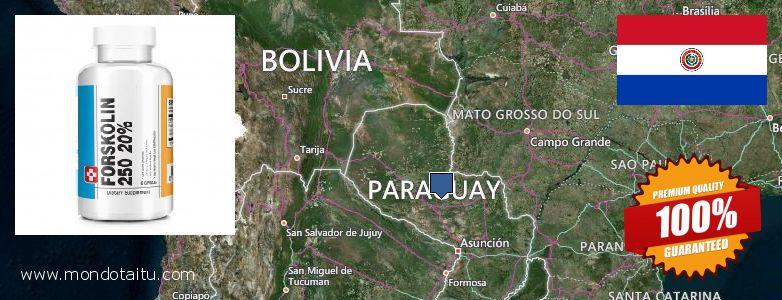 Where to Buy Forskolin Diet Pills online Paraguay