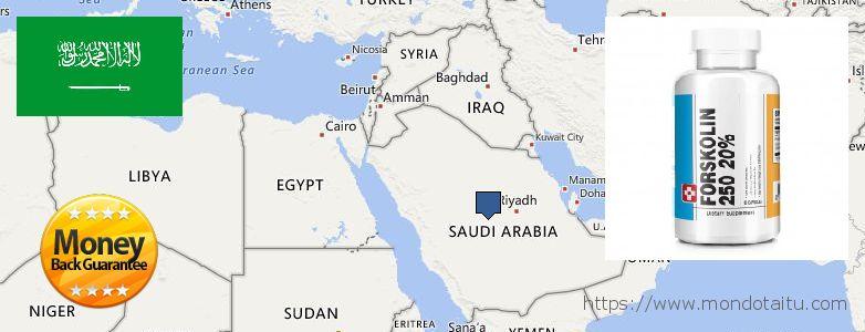 Best Place to Buy Forskolin Diet Pills online Saudi Arabia