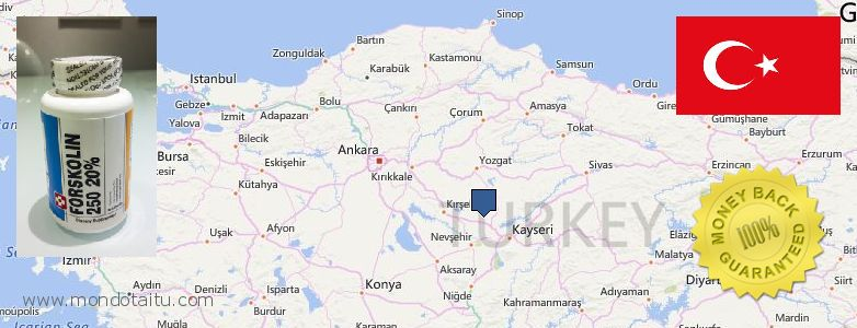 Where Can I Purchase Forskolin Diet Pills online Turkey