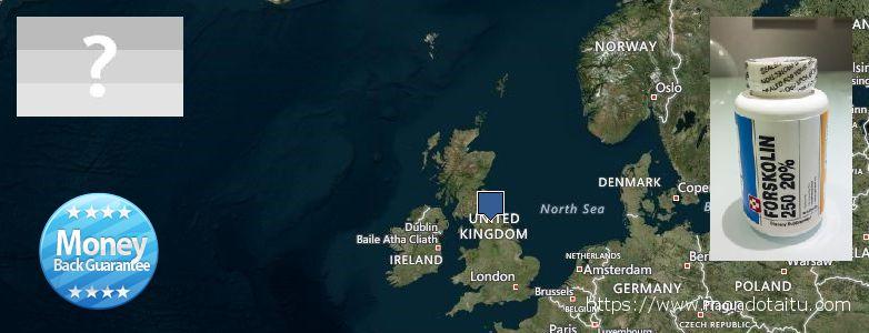 Where to Buy Forskolin Diet Pills online UK
