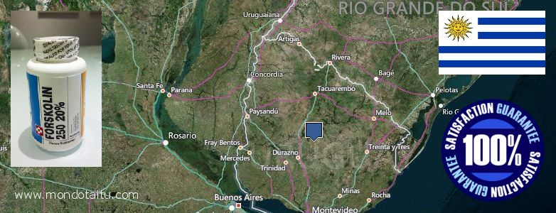 Where to Purchase Forskolin Diet Pills online Uruguay