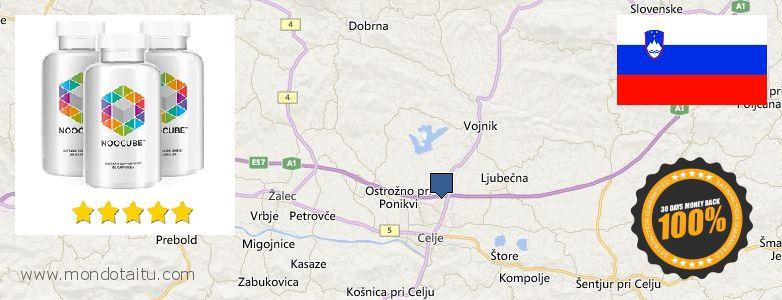 Where to Buy Nootropics online Celje, Slovenia