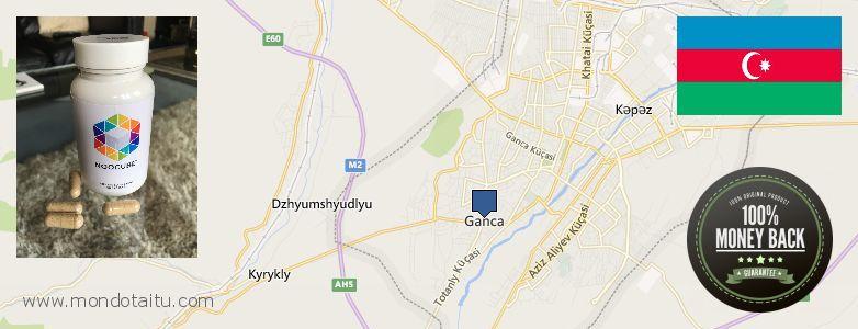 Where to Buy Nootropics online Ganja, Azerbaijan