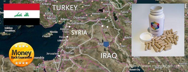 Where to Buy Nootropics online Iraq