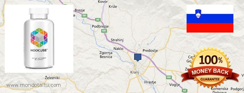 Where to Buy Nootropics online Kranj, Slovenia