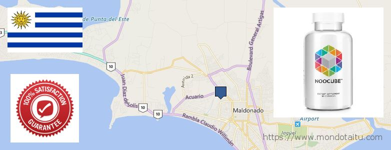 Where Can I Buy Nootropics online Maldonado, Uruguay
