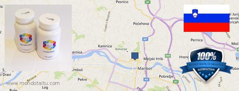Where Can I Purchase Nootropics online Maribor, Slovenia