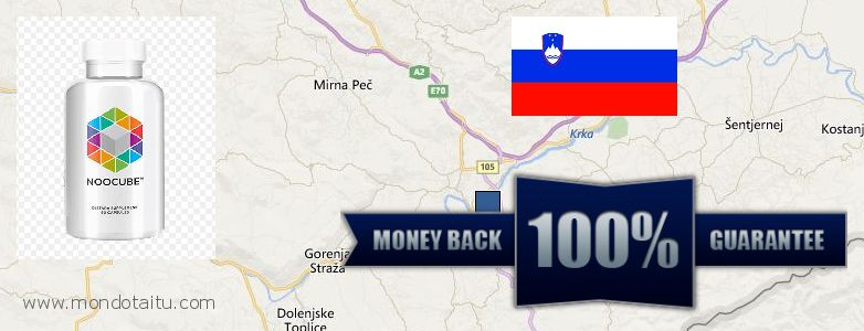 Where to Buy Nootropics online Novo Mesto, Slovenia