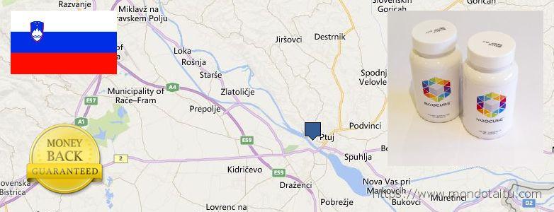 Where to Buy Nootropics online Ptuj, Slovenia