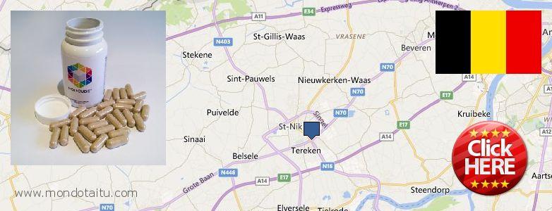 Where to Buy Nootropics online Sint-Niklaas, Belgium