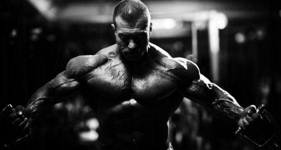 Best Place to Buy Clenbuterol in Estonia