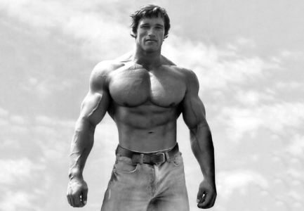 Where Can I Purchase Dianabol Steroids in Pitcairn Islands