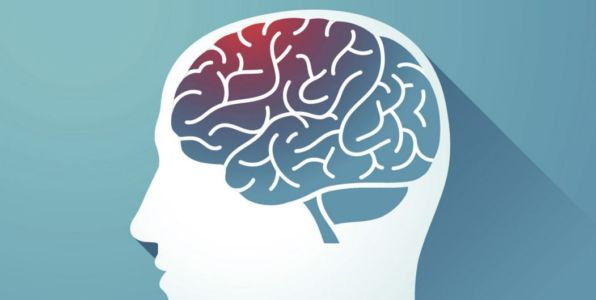 Where to Purchase Nootropics in Egypt