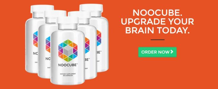 Where to Buy Nootropics in Estonia