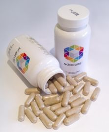 Buy Nootropics in Indonesia