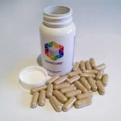 Purchase Nootropics in Jersey