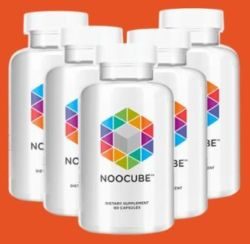 Best Place to Buy Nootropics in New Zealand
